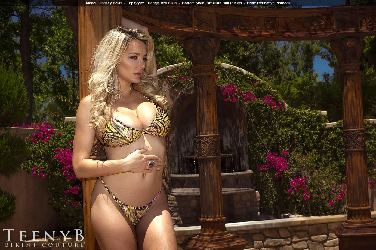 Lindsey Pelas sexy (6)