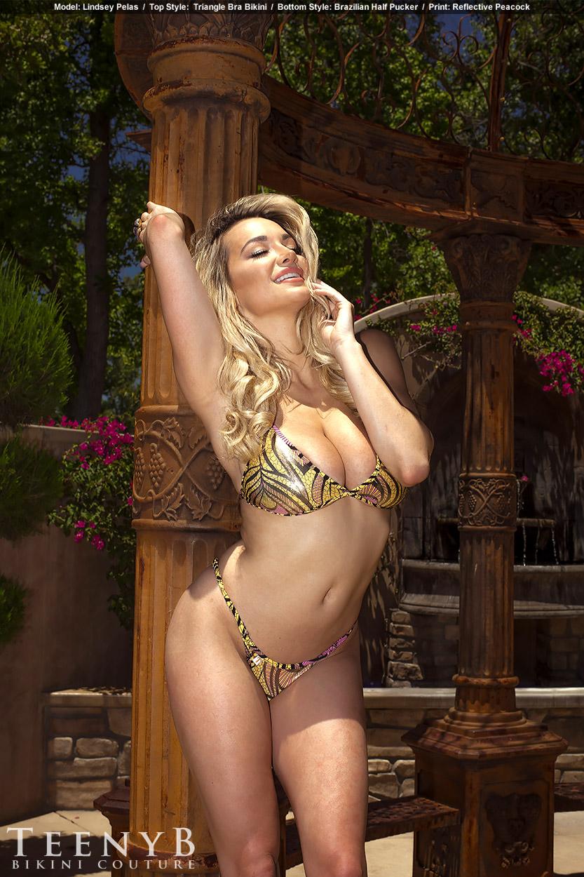 Lindsey Pelas sexy (9)