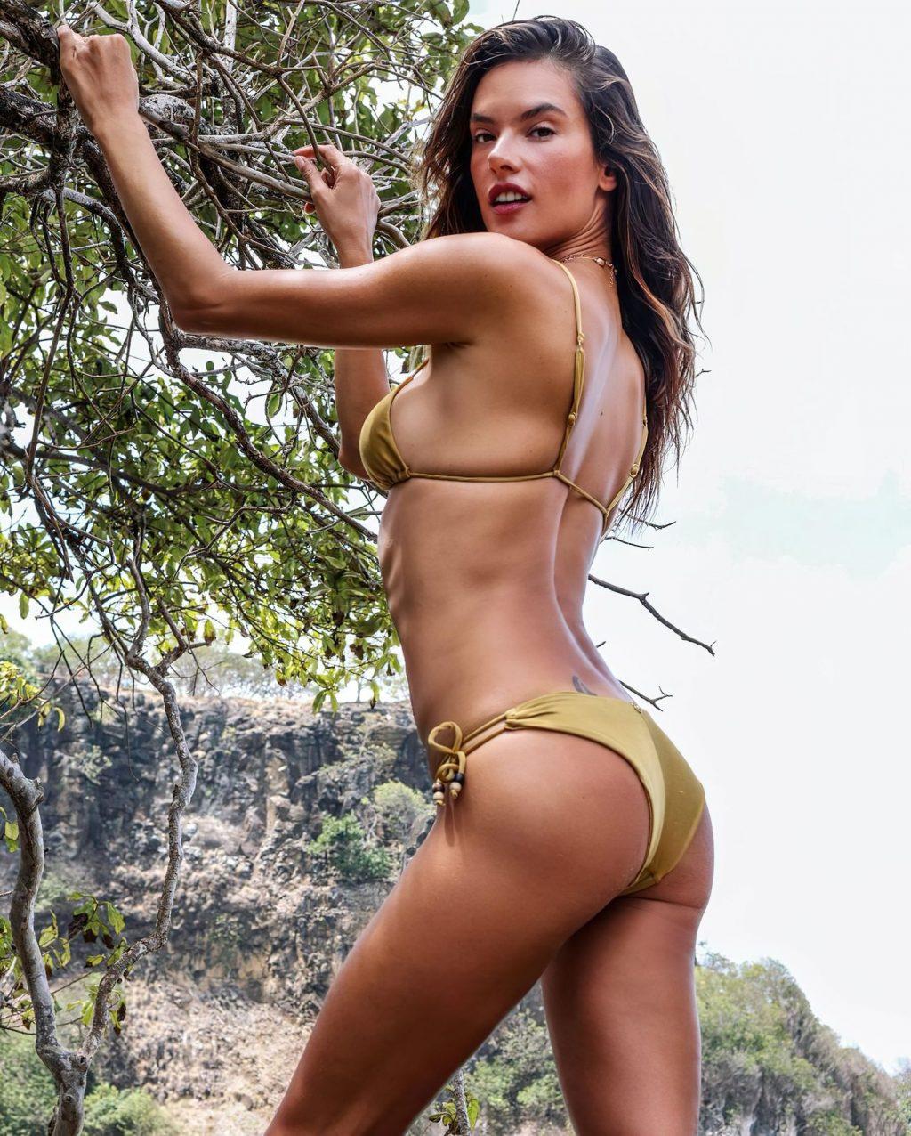 Алессандра Амбросио в бикини — #TheFappening
